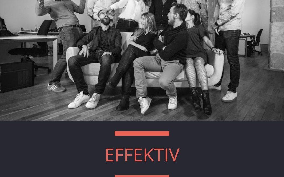 Portraits d'Édonistes aux bureaux de l'agence Effektiv