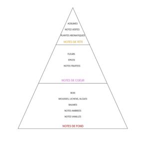 pyramide-olfactive